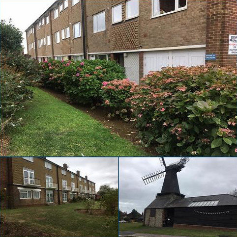 2 bedroom flat to rent - The Mount, Holmes Avenue, Hove BN3