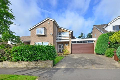 4 bedroom detached house for sale - Silverdale Road, Sheffield