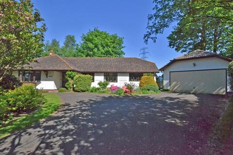 4 bedroom detached bungalow for sale - Exeter, Devon