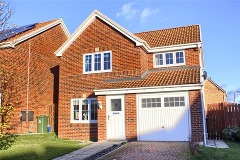 3 bedroom detached house for sale - Darwin Close, Meadow Rise