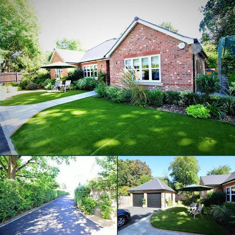 3 bedroom detached bungalow to rent - Links Road, Ashtead KT21