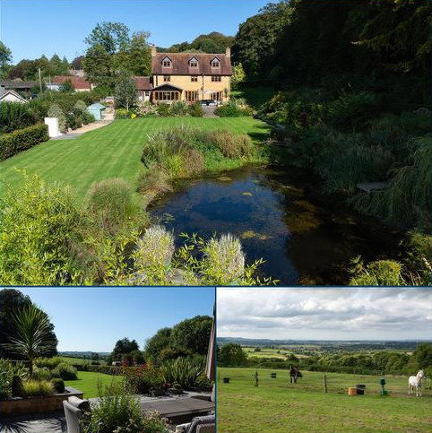4 bedroom equestrian property for sale - Chedington, Beaminster, Dorset, DT8