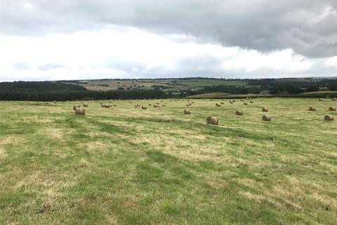 Land to rent - Consett, County Durham, DH8