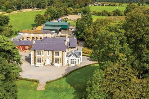 8 bedroom detached house - Crotanstown House & Stud, Crotanstown, Curragh, Co Kildare