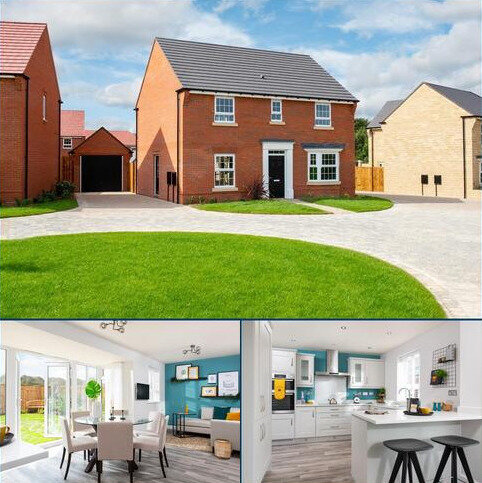 4 bedroom detached house for sale - Plot 131, Bradgate at David Wilson Eagles' Rest, Burney Drive, Wavendon MK17