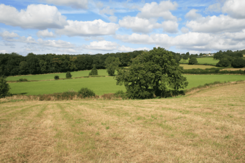 Farm land for sale - The Farm, Back Road, Apperknowle, Dronfield S18