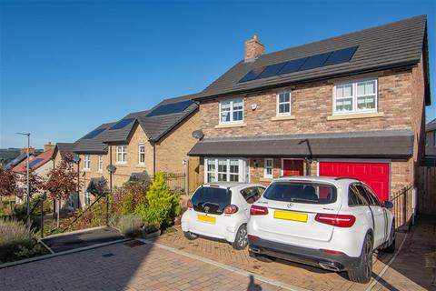 4 bedroom detached house for sale - Lawther Walk, Consett, DH8 0TT