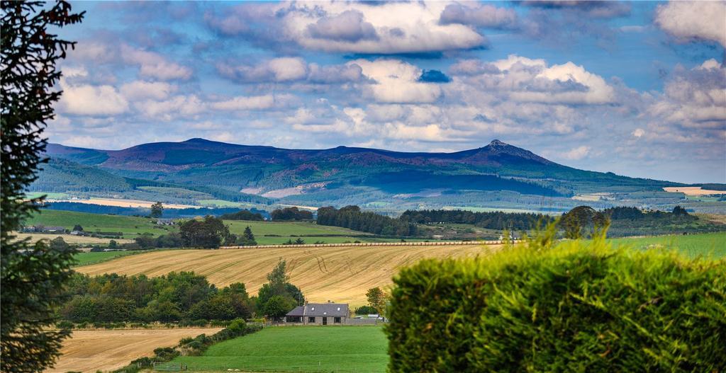 Views Of Bennachie