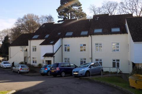 2 bedroom apartment to rent - Ashford Road, Hastings