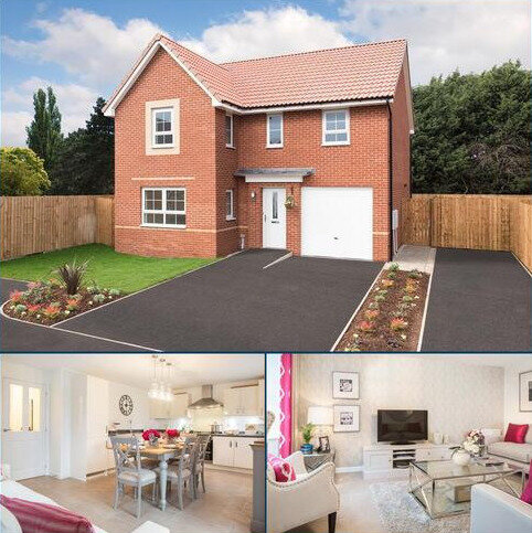 4 bedroom detached house for sale - Plot 50, Halton at Elderwood, Bannerdale, Carter Knowle Road, Bannerdale, SHEFFIELD S7