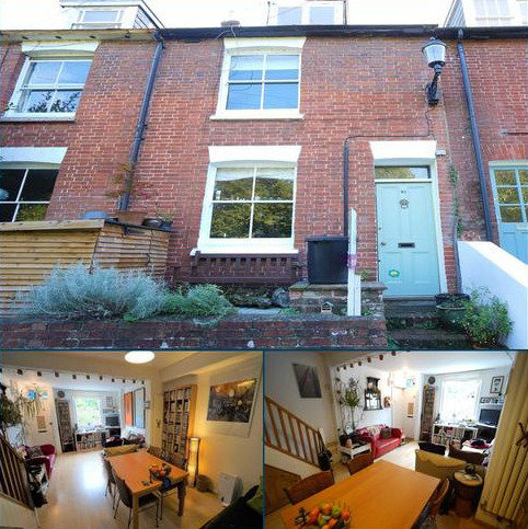 3 bedroom terraced house for sale - Paddock Road, Lewes