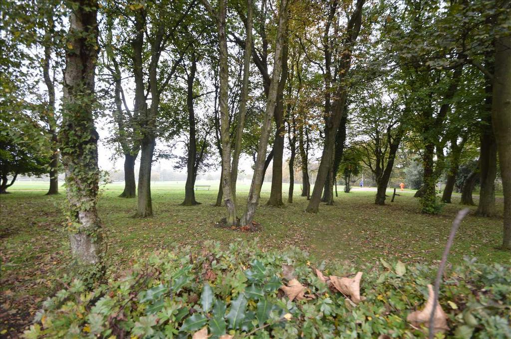 Outlook onto Dunbeth Park