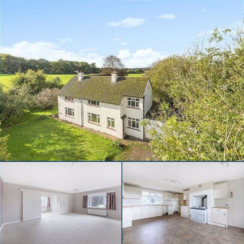 4 bedroom detached house to rent - Poltimore, Poltimore, Exeter, EX4