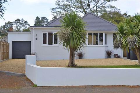 3 bedroom detached bungalow for sale - Leigh Lane, Wimborne, Dorset