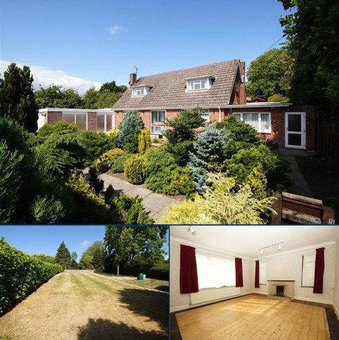 3 bedroom detached bungalow for sale - Winterbourne Abbas, Dorchester, Dorset, DT2