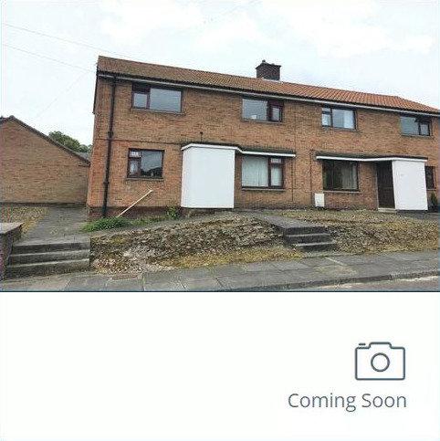 3 bedroom terraced house to rent - Windsor Gardens, Alnwick