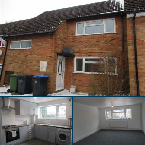 2 bedroom semi-detached house to rent - Canada Fields, Lutterworth LE17
