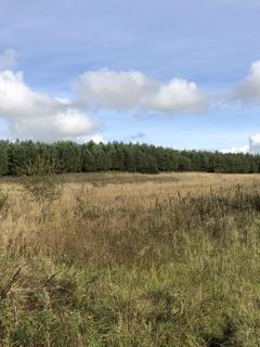 Property for sale - Hannahston Woodland, Drongan, Ayr KA6