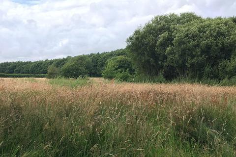 Land for sale - Great Priory Wood, Moorstock Lane, Sellindge,