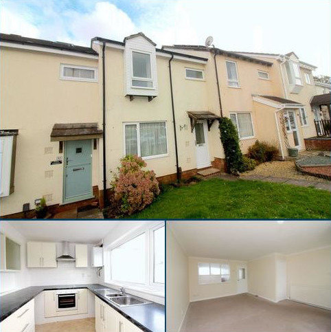 3 bedroom terraced house to rent - Burn River Rise, Torquay