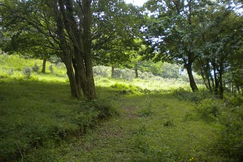 Land for sale - Field Shelter and Land adjoining Oakland Close, Glais, Swansea, City And County of Swansea. SA7 9EN