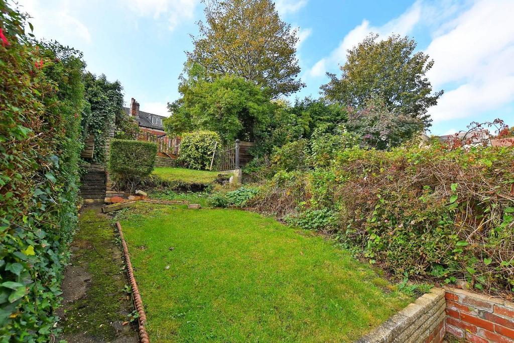 47 Brighton Terrace   garden.jpg