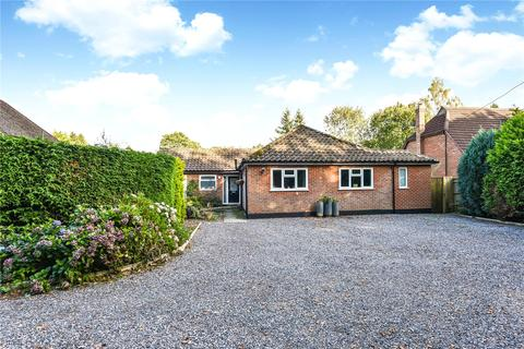 4 bedroom bungalow for sale - Old Odiham Road, Alton, Hampshire