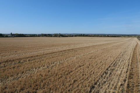 Farm land for sale - Bulphan