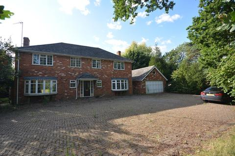 5 bedroom detached house to rent - Main Road, Broomfield, Chelmsford, Essex, CM1