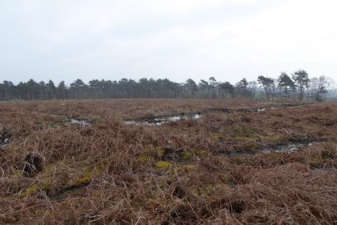 Farm land for sale - Heighley Lane, Betley, Crewe CW3