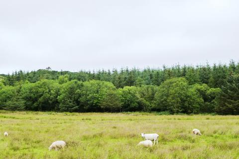 Land for sale - Llanegryn, Tywyn, Gwyness LL36