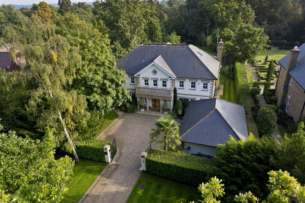 6 Bedrooms Detached House for sale in Burwood Park