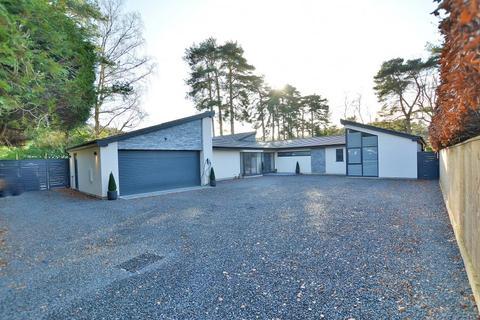 5 bedroom detached bungalow for sale - Carroll Avenue, Ferndown, Dorset, BH22 8BP