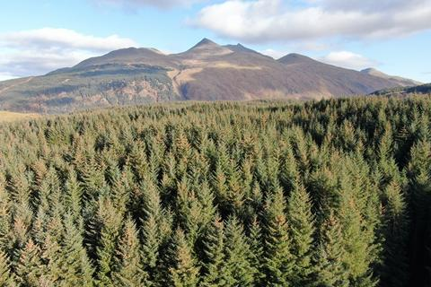 Land for sale - Ichrachan Forest, Taynuilt, Argyll PA35