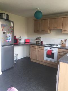 3 bedroom semi-detached house to rent - Regents Close, Scunthorpe