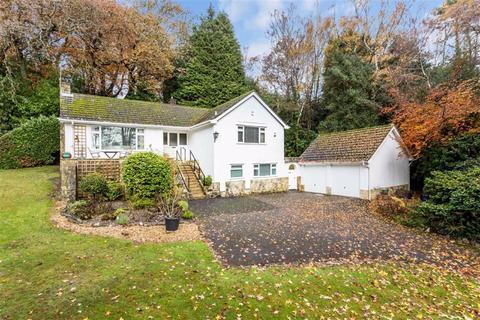 4 bedroom detached bungalow for sale - Park Homer Drive, Wimborne, Dorset