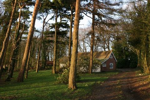 3 bedroom detached bungalow to rent - Wye Road, Hastingleigh, Ashford
