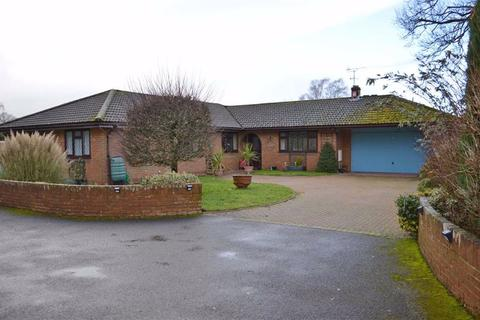 4 bedroom detached bungalow for sale - Springdale Road, Wimborne, Dorset