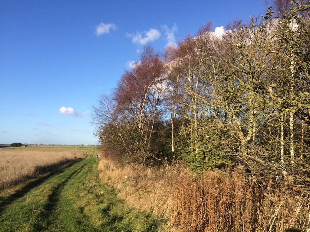 Land Commercial for sale in Waddingham, Brigg, Lincolnshire