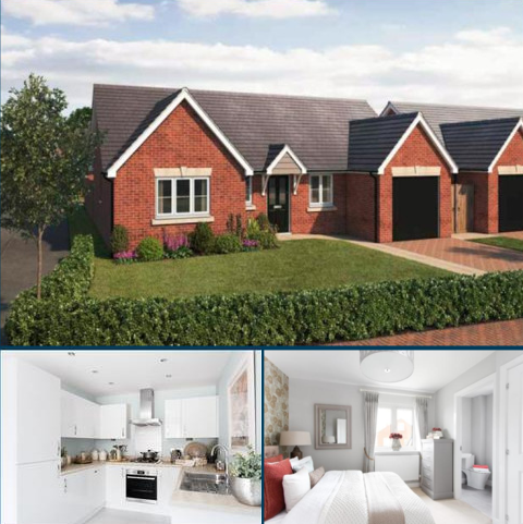 3 bedroom detached bungalow for sale -  Newcastle Under Lyme  ST5