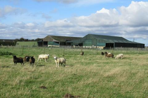 Farm for sale - Hale Lane, Frithville, Boston