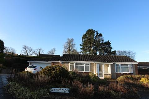 2 bedroom detached bungalow to rent - Ashtree Close, Darlington