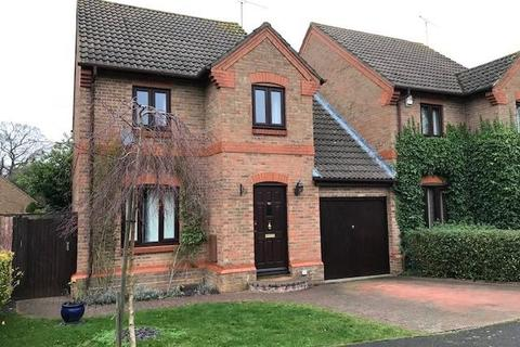 3 bedroom detached house to rent - Carnation Drive, Winkfield Row, RG42