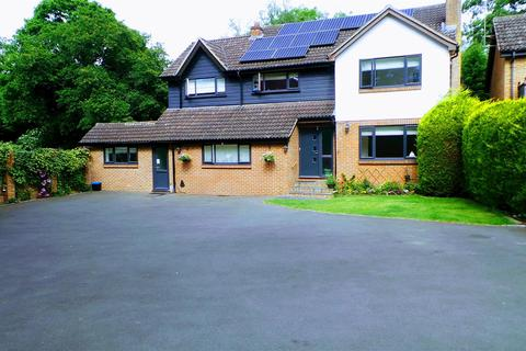 4 bedroom detached house to rent - Charters Way, Sunningdale