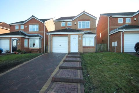 3 bedroom detached house for sale - Meadow View, Wheatley Hill, Durham