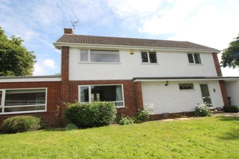 3 bedroom house to rent - Orchard Close, Woodbury, Exeter, Devon, EX5
