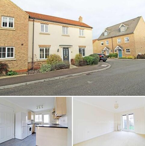 3 bedroom semi-detached house to rent - Meadow Way, Ely