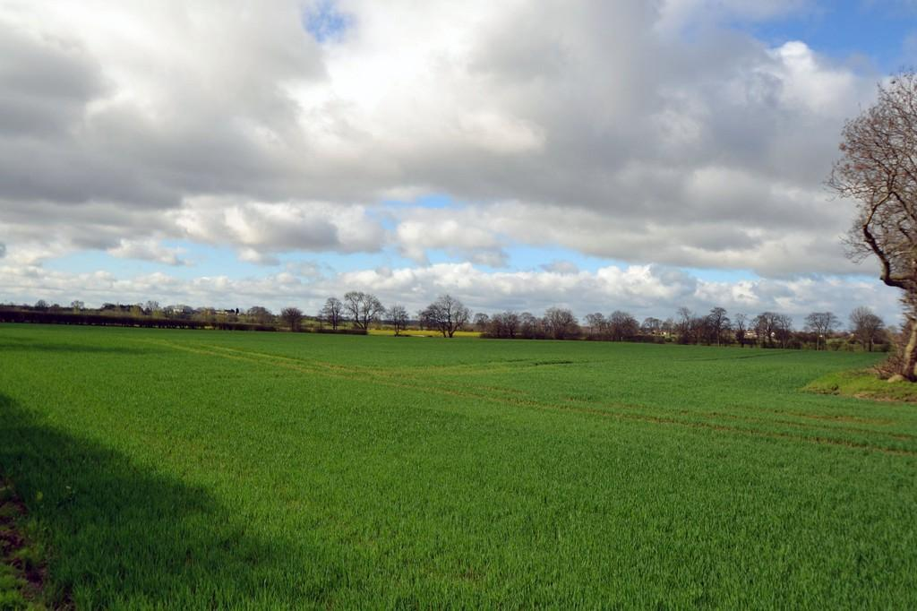 Land Commercial for sale in Land at North Mason Farm, Dinnington