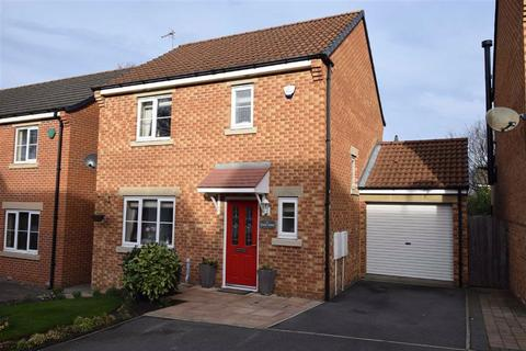 3 bedroom detached house for sale - High Trees, South Shields