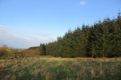 Land for sale - Ardlawmill Woodland, New Aberdour, Fraserburgh AB43